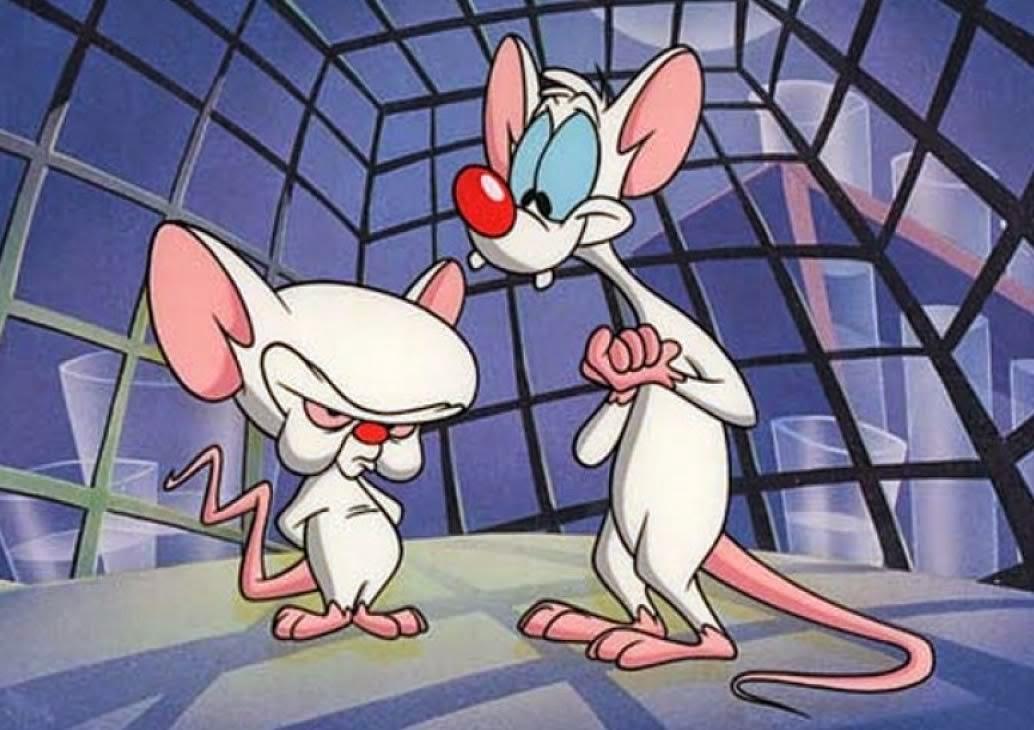 Resultado de imagem para Pinky & Cérebro